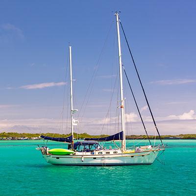 aa-galapagos-luxury-cruises.jpg