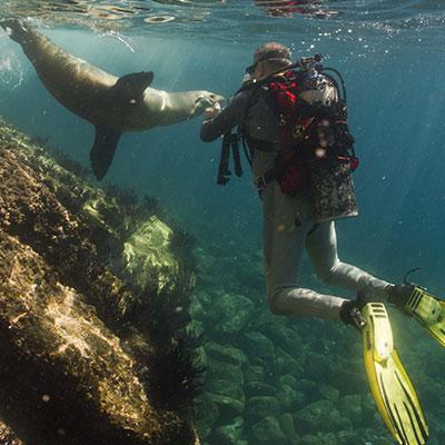 aa-galapagos-watersport-snorkeling-1.jpg