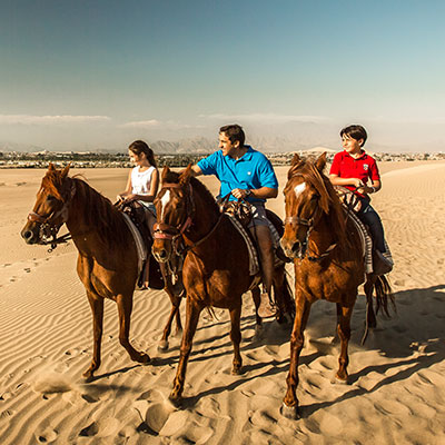 aa-ica-horseback-riding.jpg