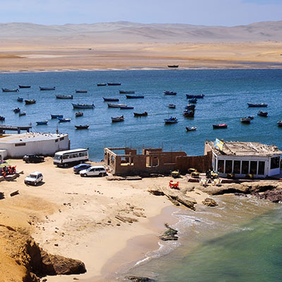 aa-paracas-great-fishing.jpg