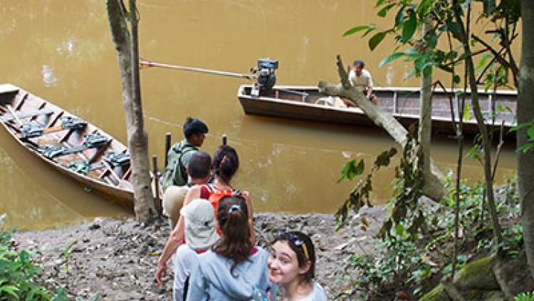 Jungle Excursions