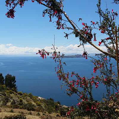 aa-titicaca-isla-del-sol.jpg