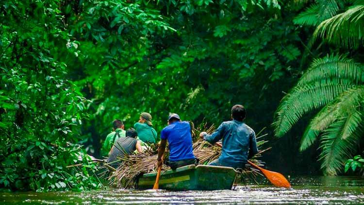 Amazon River Exploration Peru