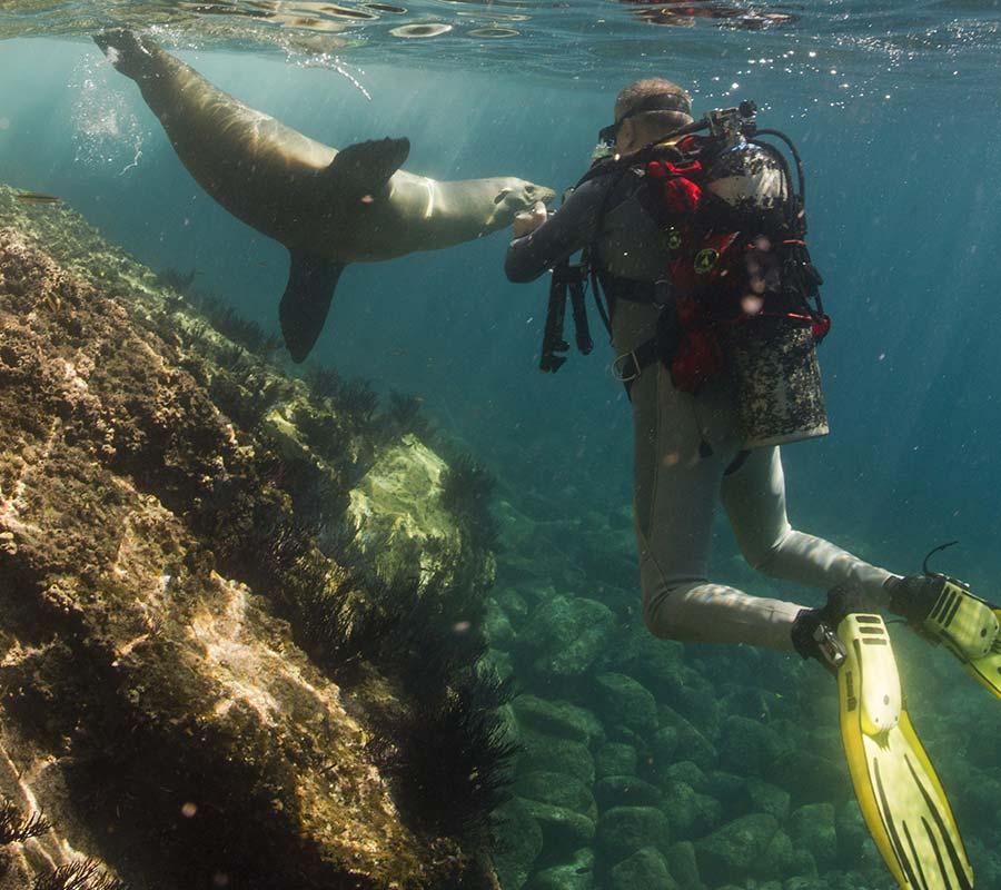 faa-galapagos-watersport-snorkeling.jpg