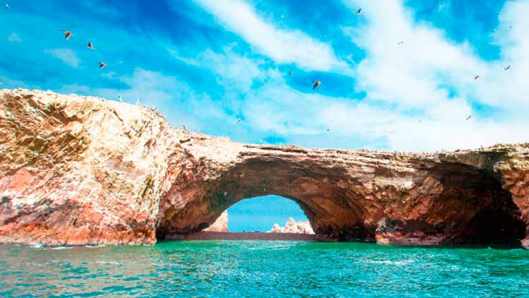 faa-luxury-paracas-private-tour