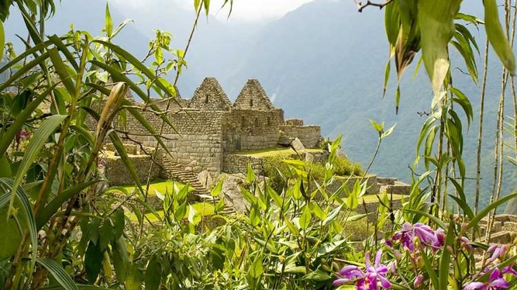 Machu Picchu Magical Experience
