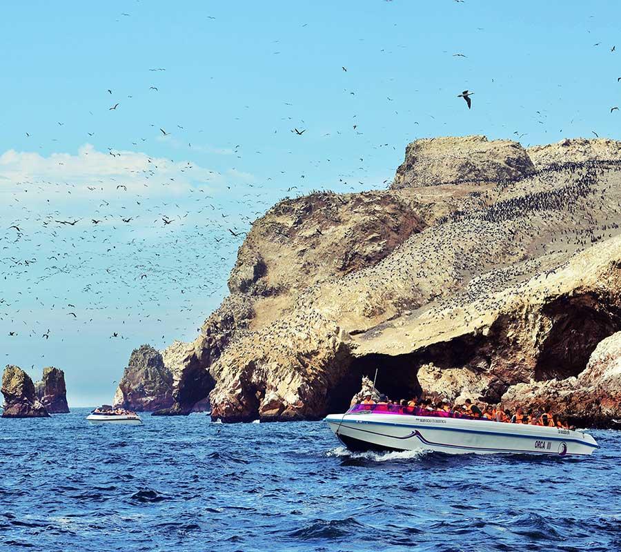 faa-paracas-boat-excursions.jpg