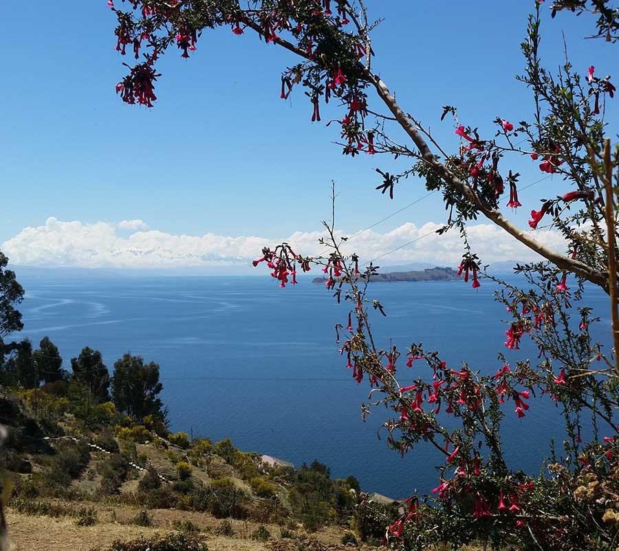 faa-titicaca-isla-del-sol.jpg