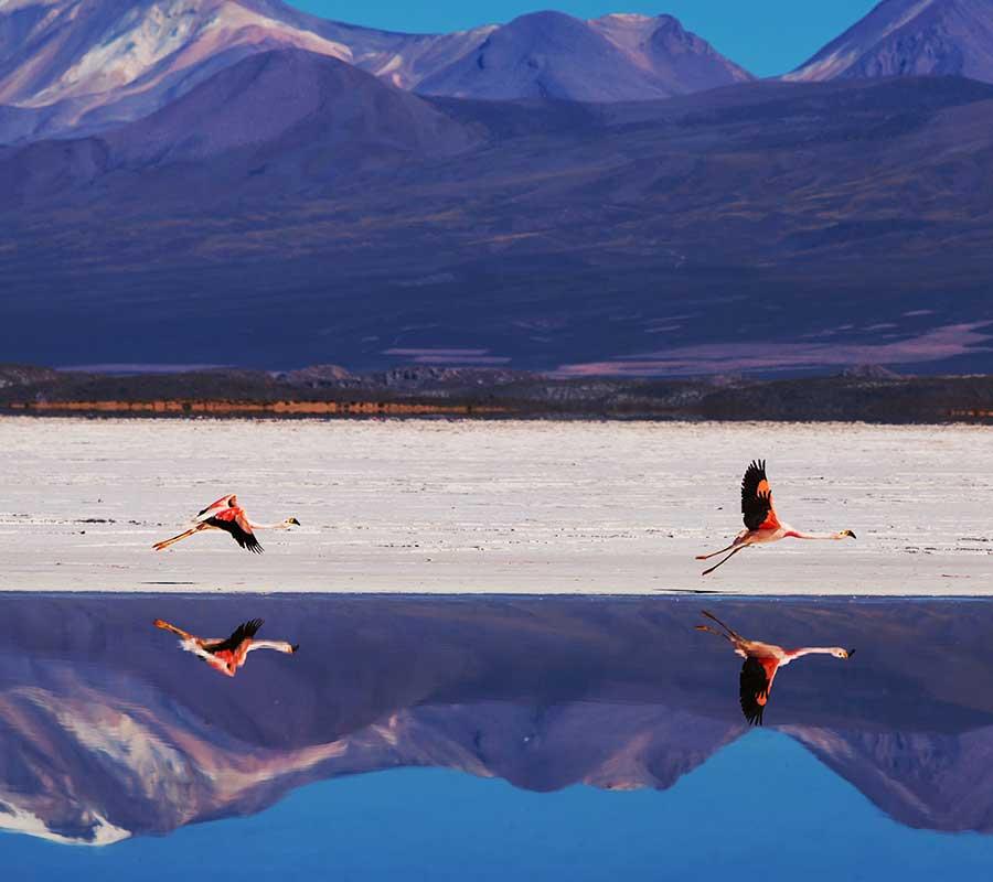 faa-uyuni-lagoons.jpg