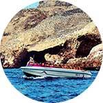 ico-paracas-boat-excursions