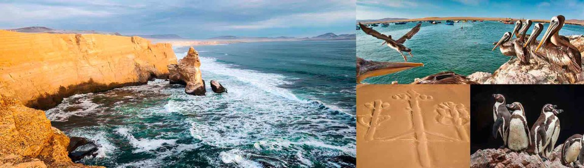 peru-paracas-destination-banner.jpg