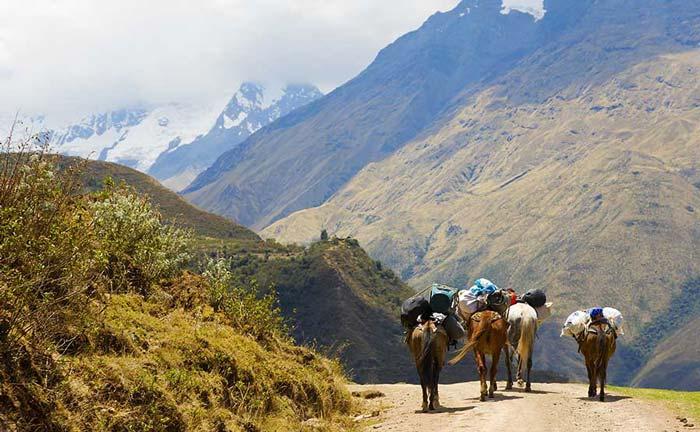 Private Peru tour hiking the Salkantay trek to Machu Picchu