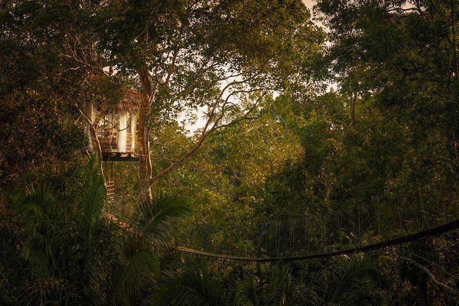 accommodation-iquitos-tree-house-lodges-14.jpg