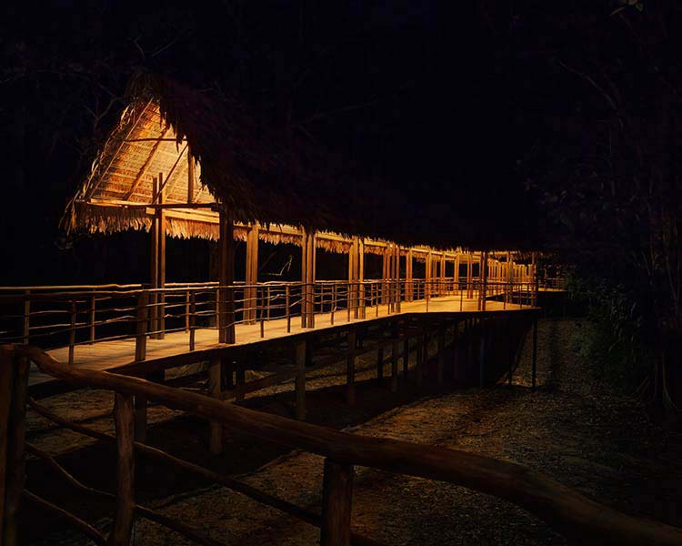 accommodation-iquitos-tree-house-lodges-22.jpg