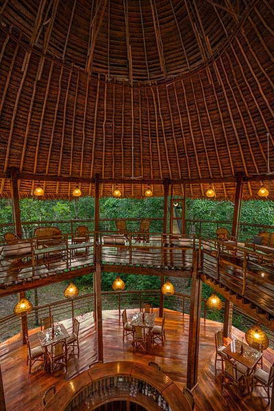 accommodation-iquitos-tree-house-lodges-4.jpg