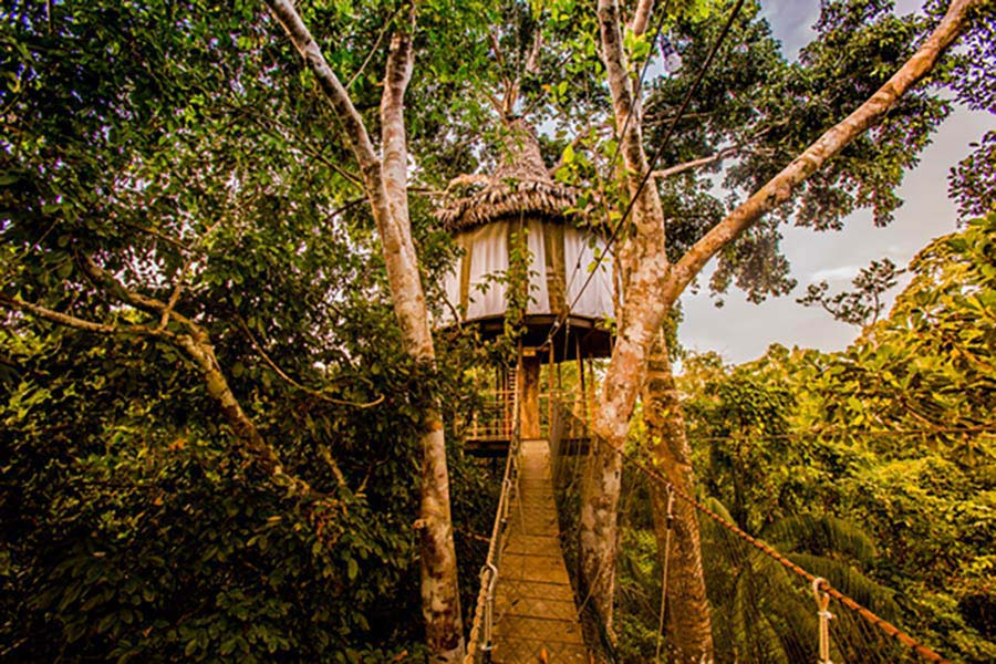 accommodation-iquitos-tree-house-lodges-8.jpg