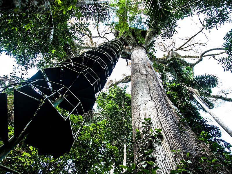accommodation-manu-wildlife-center-6.jpg