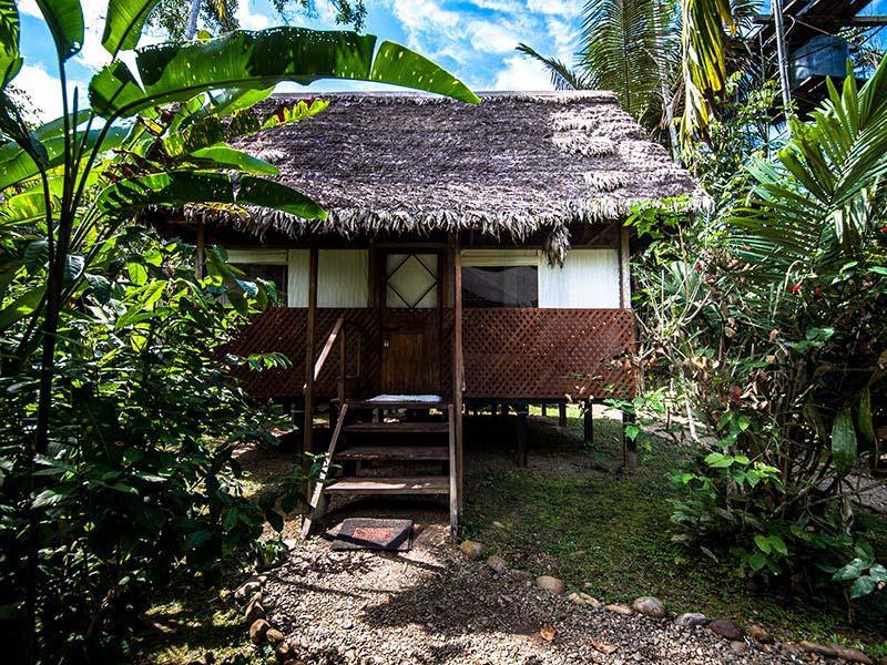 accommodation-manu-wildlife-center-9.jpg