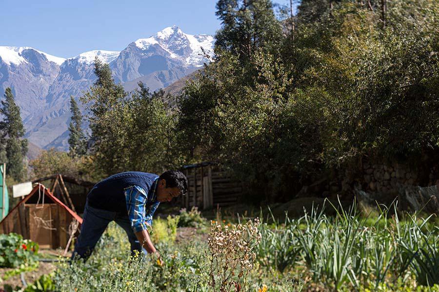 accommodation-sacred-valley-el-albergue-ollantaytambo-11.jpg