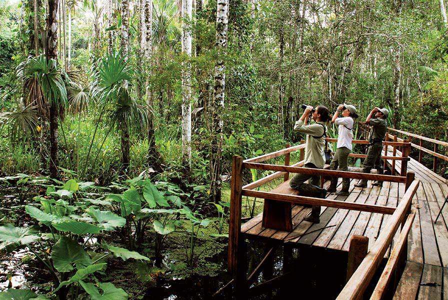 accommodation-tambopata-inkaterra-reserva-amazonica-1.jpg