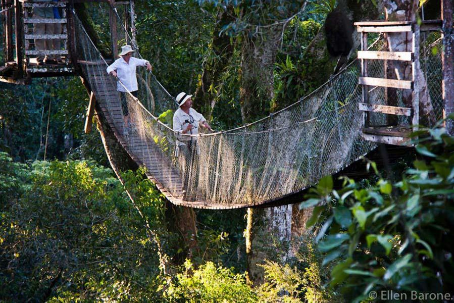 accommodation-tambopata-inkaterra-reserva-amazonica-10.jpg