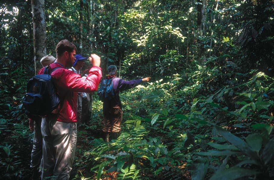 accommodation-tambopata-inkaterra-reserva-amazonica-13.jpg