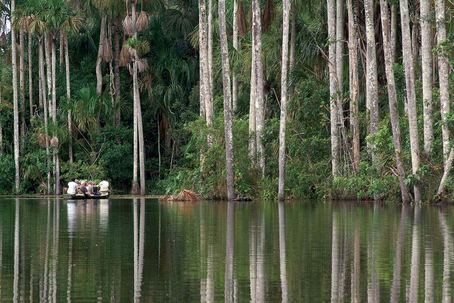 accommodation-tambopata-inkaterra-reserva-amazonica-7.jpg