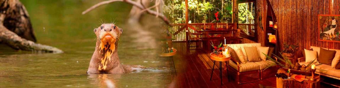 accommodations-hotels-tambopata.jpg