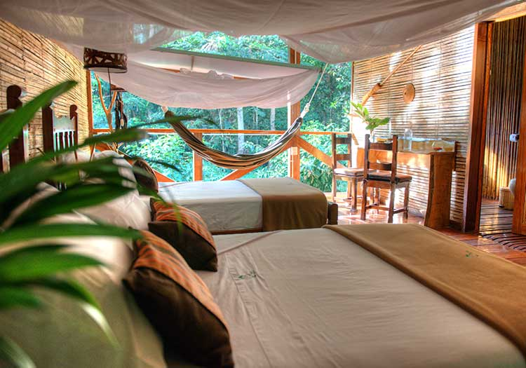 featured2-accommodation-tambopata-refugio-amazonas.jpg
