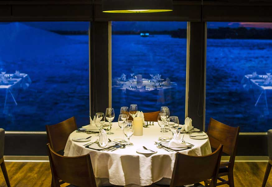 gallery-amazon-cruise-aqua-3.jpg