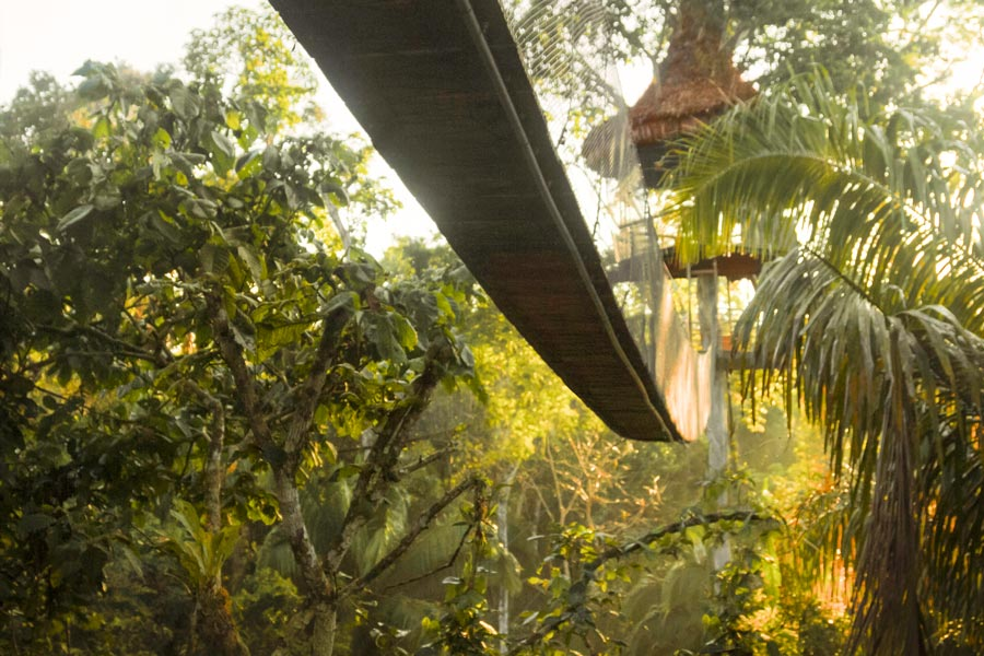 kuoda-blog-tree-house-lodges