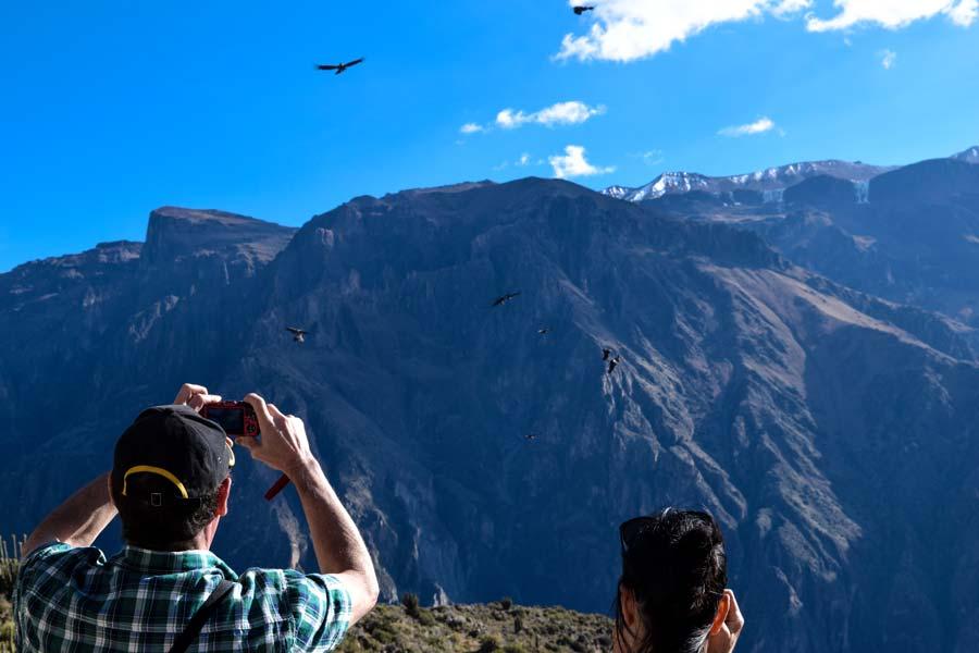 kuoda-blog-andean-condor-view.jpg