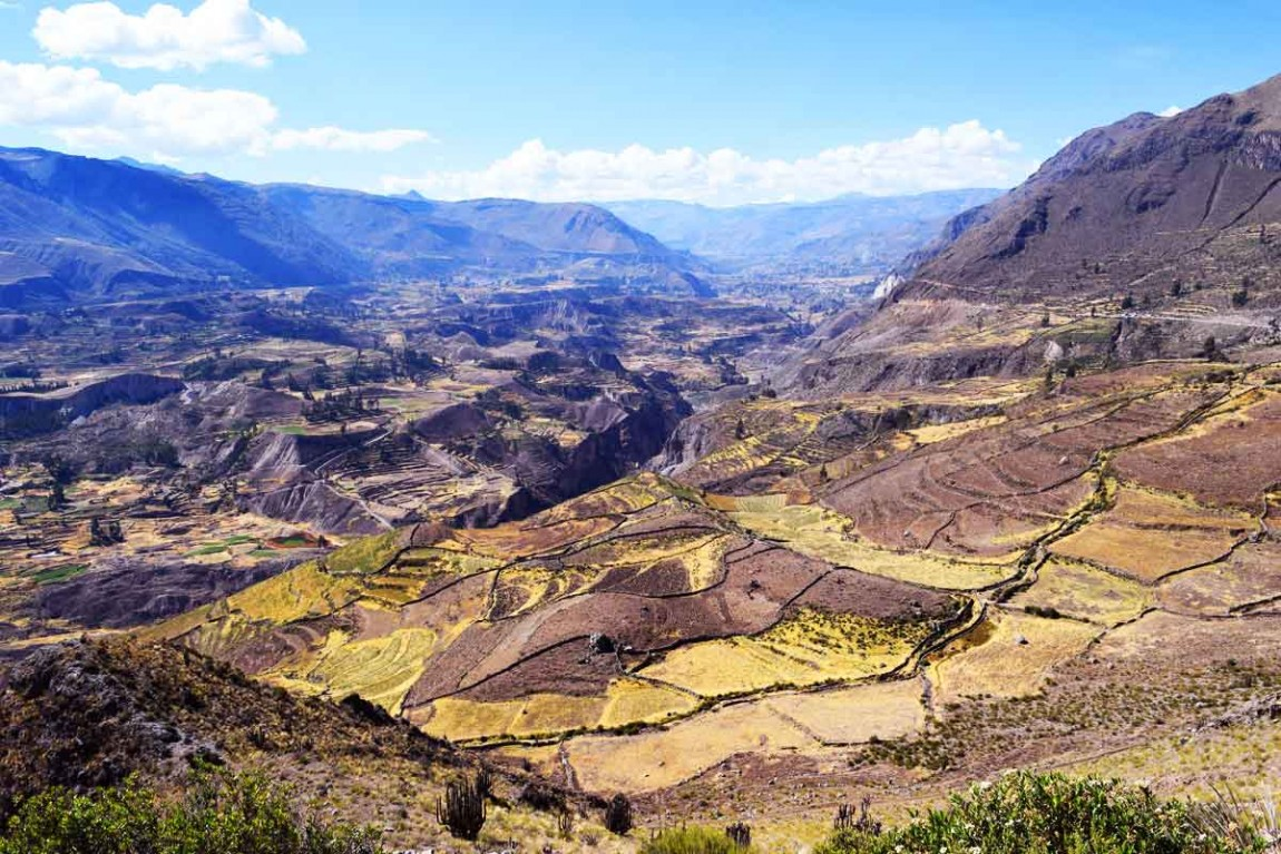 kuoda-blog-colca-canyon.jpg
