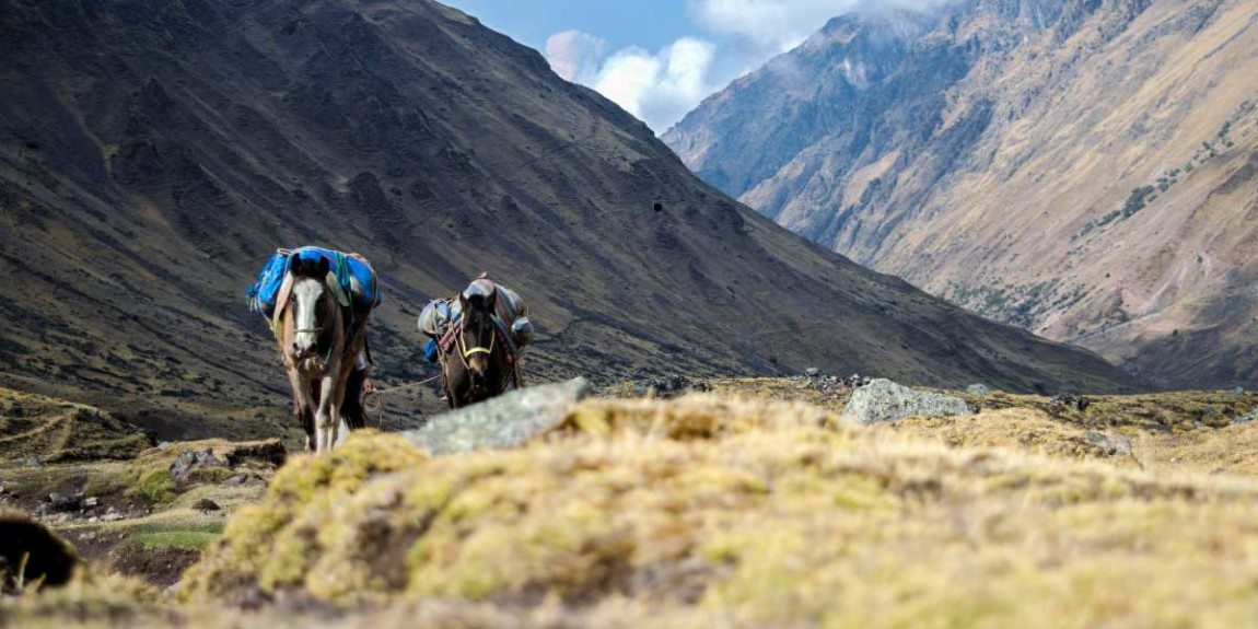 private-tours-new-hike-trek-salkantay-machu-picchu.jpg
