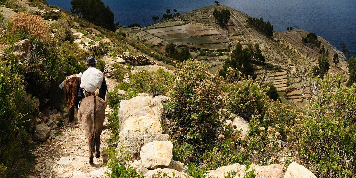 Explore La Pax and the islands of Lake Titicaca on an exclusive Bolivia tour