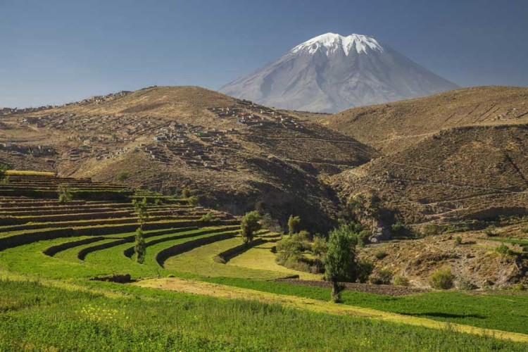 pacha-peru-blog-arequipa-vs-iquitos-chillon-valley