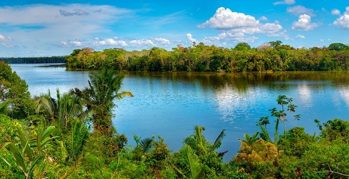 manglares-tumbes.jpg