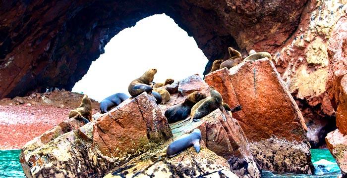 paracas-national-park