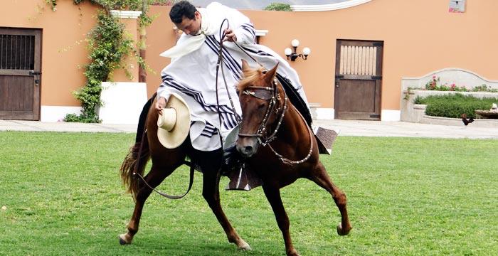 paso-horse-lima