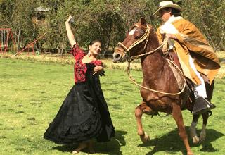 peruvian-paso-horse-marinera.jpg
