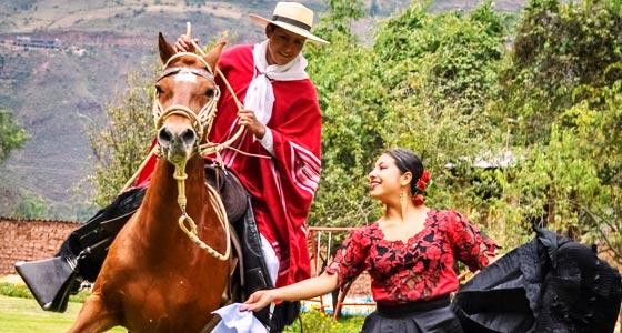 horses-dance-human-marinera