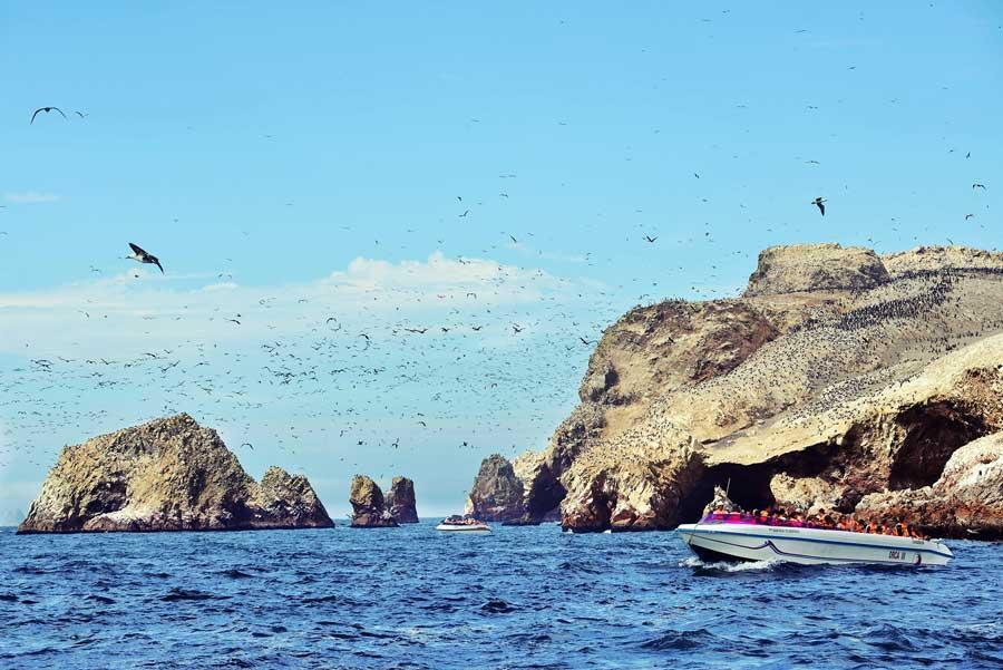 kuoda-blog-insider-access-ballestas-island-private-yatch-tour.jpg
