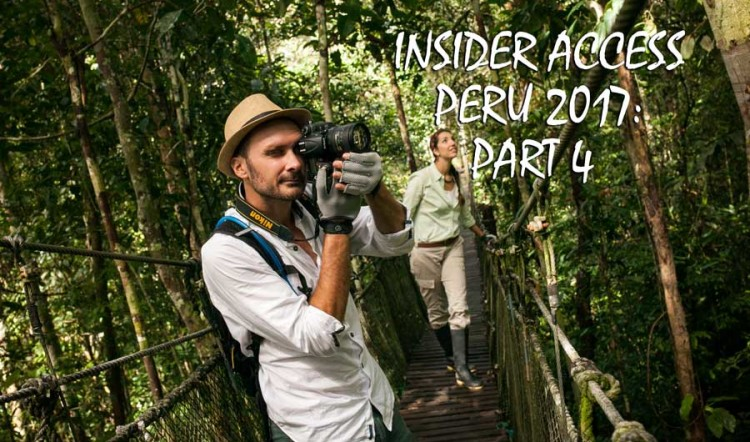 Insider Access Series, Part 4: Archaeology & Nature Tours in Peru