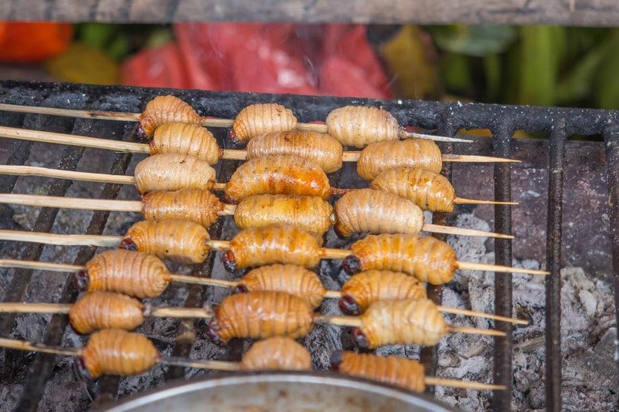 street-food-suri-iquitos-peru