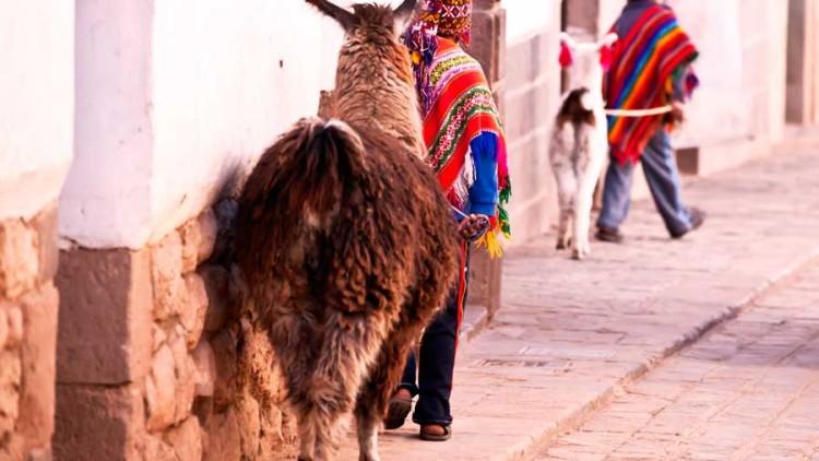 Cultural Differences: Peru vs. United States