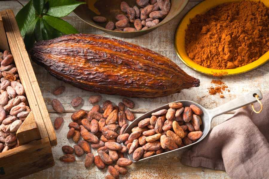 cacao-super-food-peru