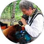 ico-tambopata-national-park-ecotourism.jpg