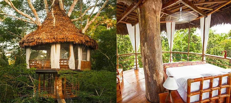 unique-stays-peru-luxury-meets-adventure-travel-tree-house-lodge