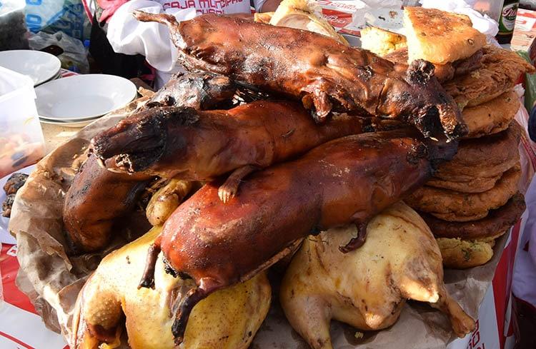 guinea-pig-cusco-peru