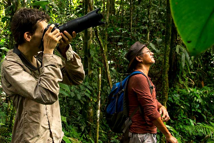 4 Tips For Photographing Birds in the Rainforest on Your Private Amazon Tour